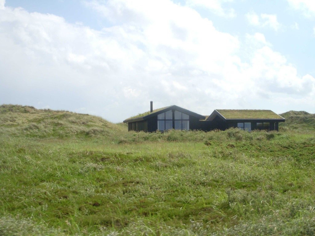 House with grass on roof